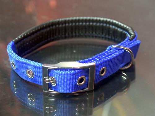 藍色寵物項圈-中小型犬